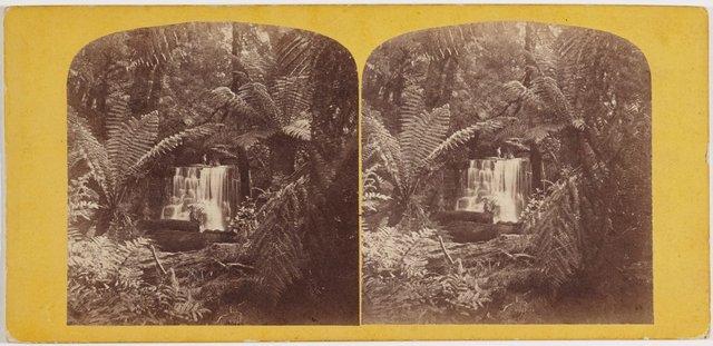 An image of Waterfall, Fern Tree Valley, Mount Wellington, Hobart Town