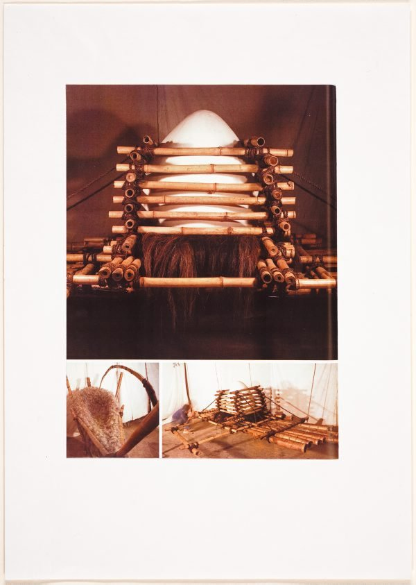 An image of Detail of Egg raft from catalogue of AGNSW installation