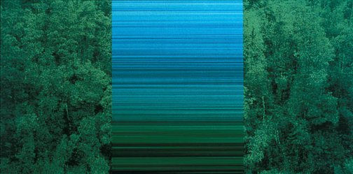 An image of greenwork, blue gradient by Rosemary Laing
