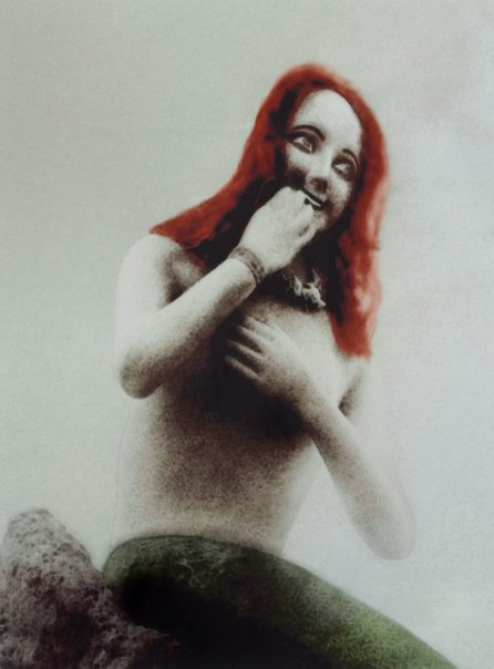 An image of By catch by Pat Brassington
