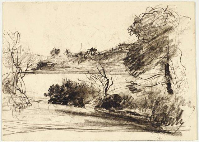 An image of recto: River view verso: Eucalypt trunks