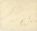 Alternate image of recto: Two studies of a hand holding a brush verso: Three hand studies ( two with brush) by Lloyd Rees