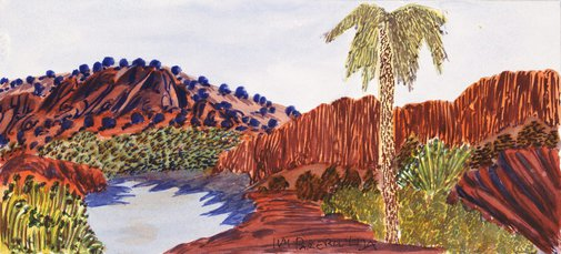 An image of Palm Valley, NT by Ivy Pareroultja