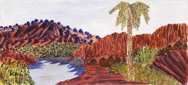 An image of Palm Valley, NT