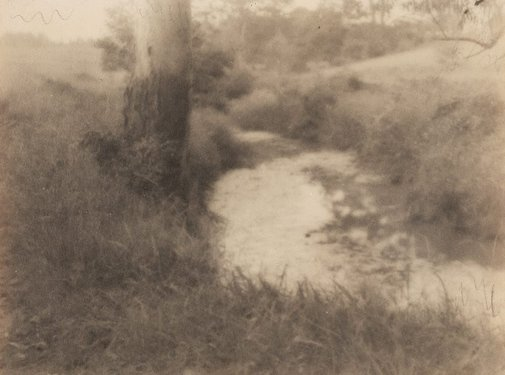 An image of Untitled (Tree and river) by James S Stening