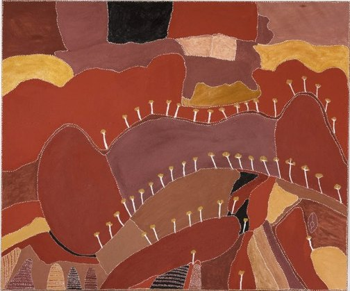An image of Ngarrgoorroon country by Patrick Mung Mung