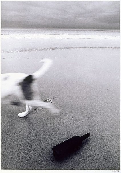 An image of Bondi by Grant Mudford