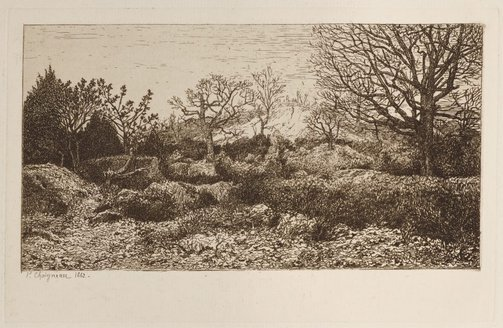 An image of Rocks in the forest, forest of Fontainebleau by Ferdinand Chaigneau