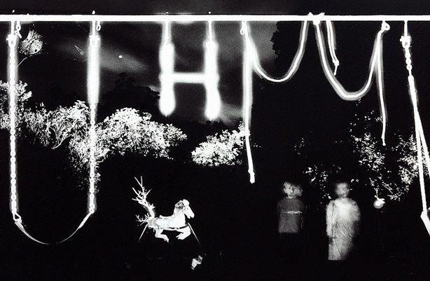 An image of Backyard swing set, QLD