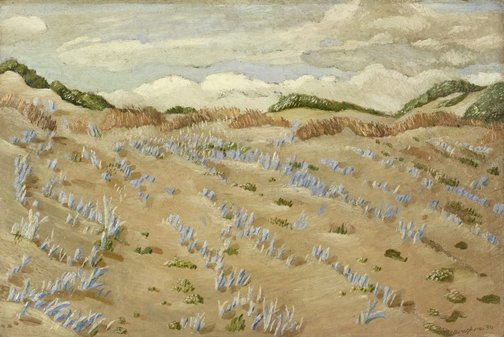 An image of Blue grass sandhills, Western Australia by Hal Missingham