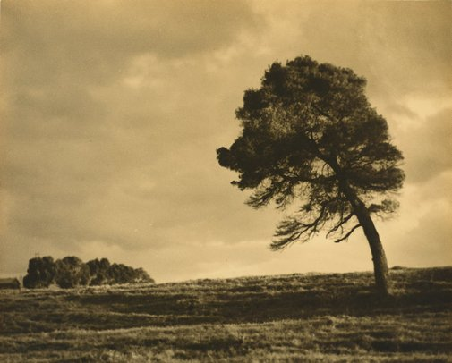 An image of Sunshine after rain by August Knapp