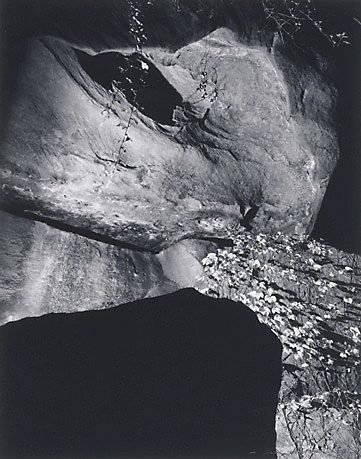 An image of Landscape by night I, Castlecrag by Max Dupain