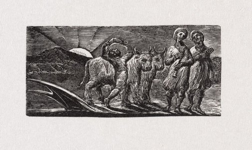 An image of Boy returning joyfully with plough and oxen by William Blake