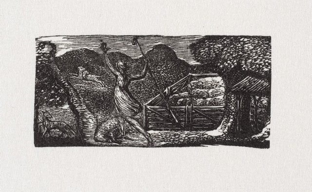 An image of Shepherd chases away wolf