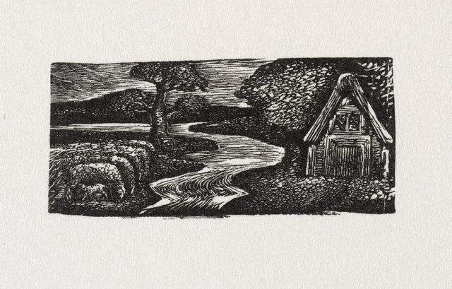 An image of Sabrina's silvery flood