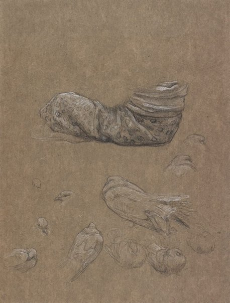 An image of Drapery study for The Bracelet, with studies of doves for Summer slumber by Lord Frederic Leighton