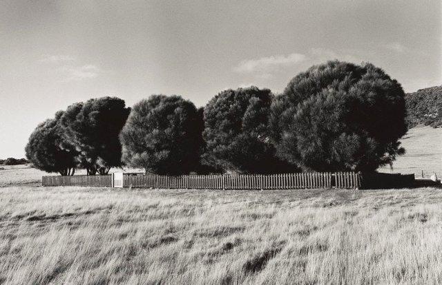 An image of The Healing Garden, Wybalenna, Flinders Island, Tasmania