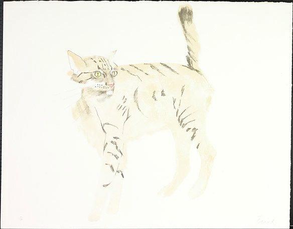 An image of Bobcat