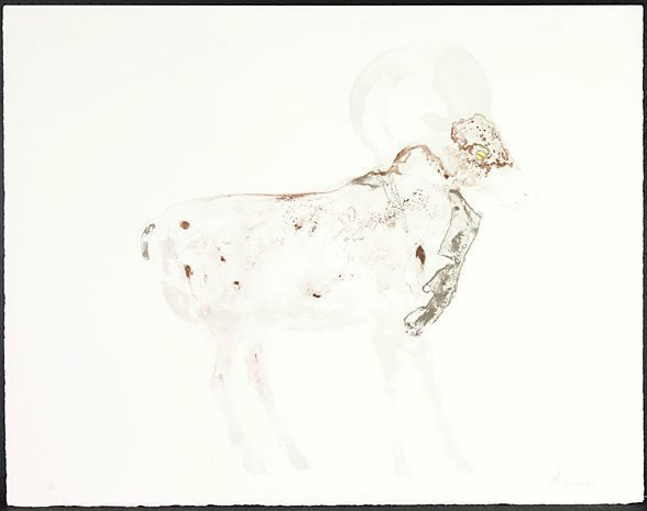 An image of Sheep