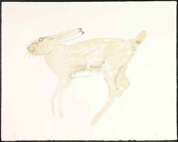 An image of Hare