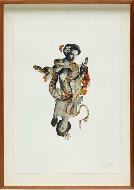 An image of Venus variations #6 by Deborah Kelly