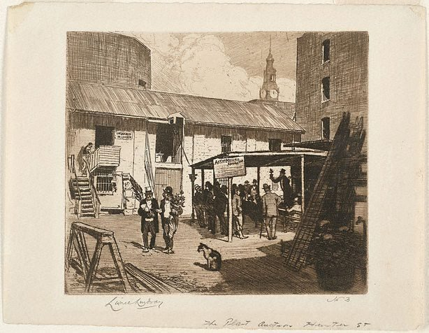 An image of Plant auction, Hunter St.