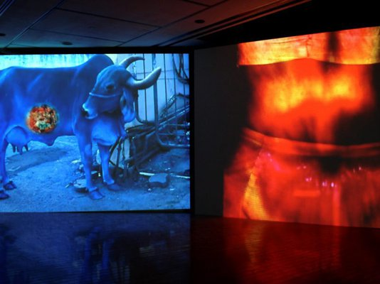 Alternate image of Mother India: Transactions in the Construction of Pain by Nalini Malani