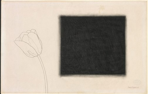 An image of Untitled (rose with diffused black square) by Derrick Greaves