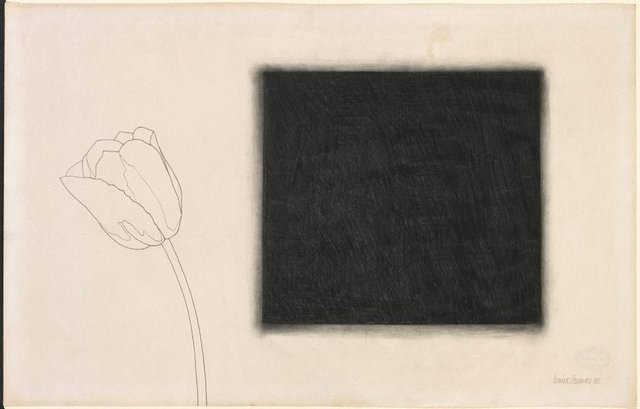 An image of Untitled (rose with diffused black square)
