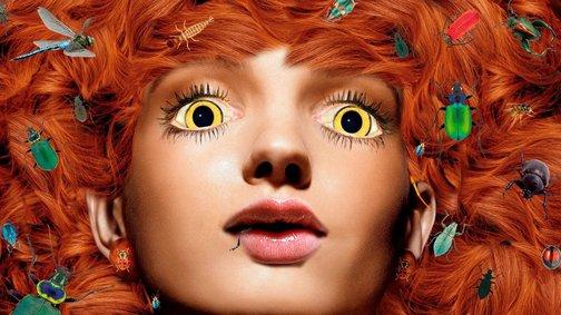 An image of Beastliness by Deborah Kelly