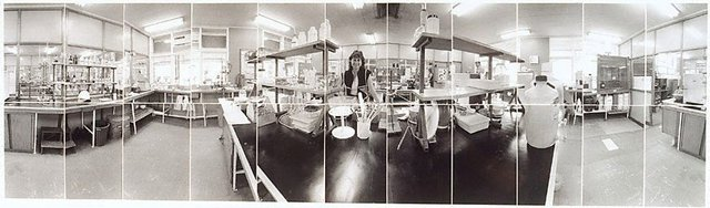 An image of Rhonda Romana in laboratory, Victoria Mill Ingham, North Queensland