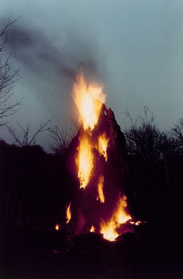 An image of Colour photograph documenting earth / body work with tree trunk and fire, Old Man's Creek, Iowa