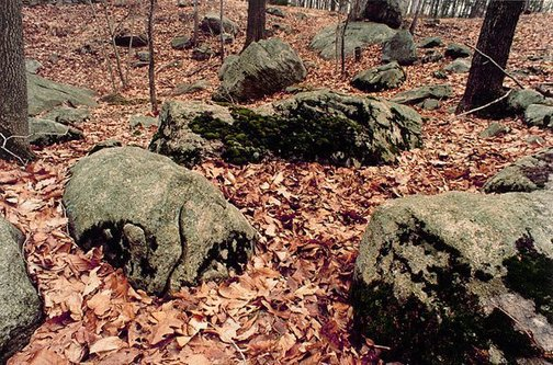An image of Colour photograph documenting earth / body work with leaves, moss and rocks, Iowa City by Ana Mendieta