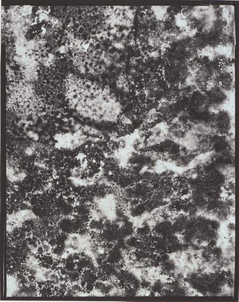 An image of Moon as mould (perhaps) by Catherine Rogers
