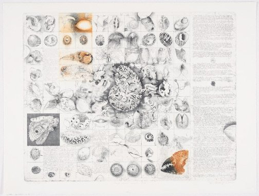 An image of Diary and beach bits by Jörg Schmeisser