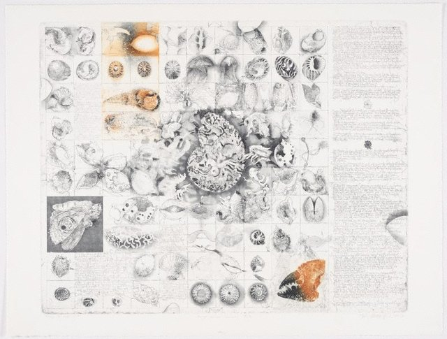 An image of Diary and beach bits