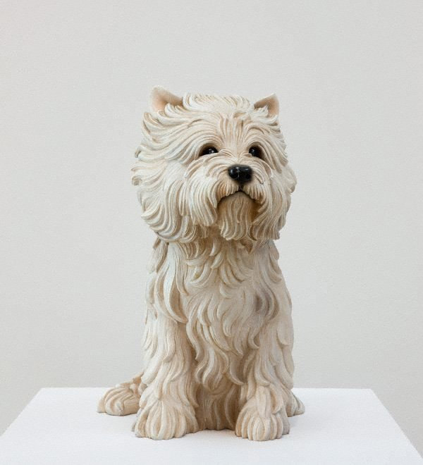 An image of White terrier