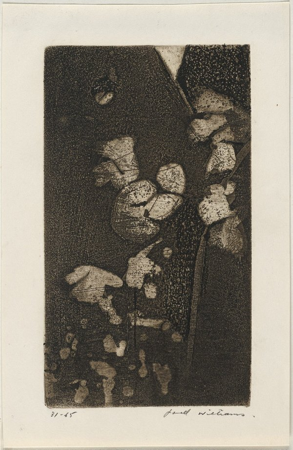 An image of Panel from 'Cosmos in the garden'