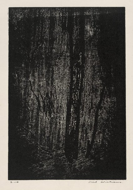 An image of In the forest, Mittagong by Fred Williams