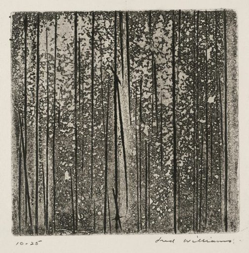 An image of Sherbrooke Forest number 2 by Fred Williams