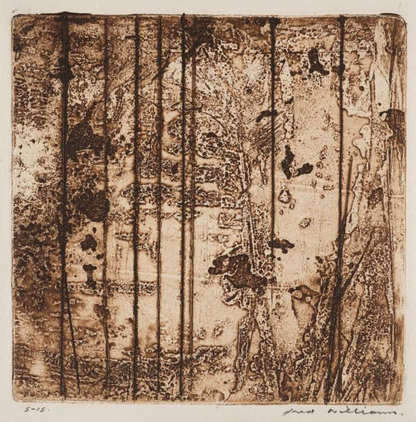 An image of Sherbrooke Forest number 7