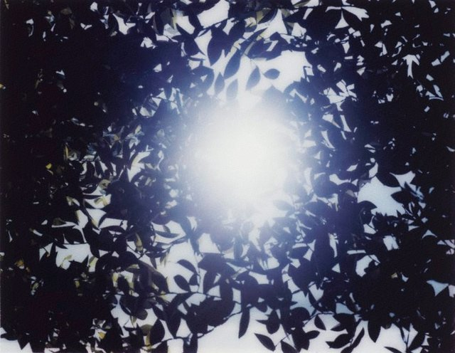 An image of Flare