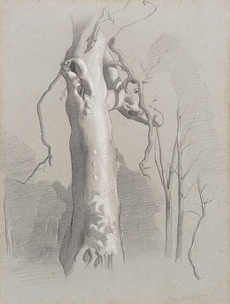 An image of Gum tree, Hahndorf by Nora Heysen