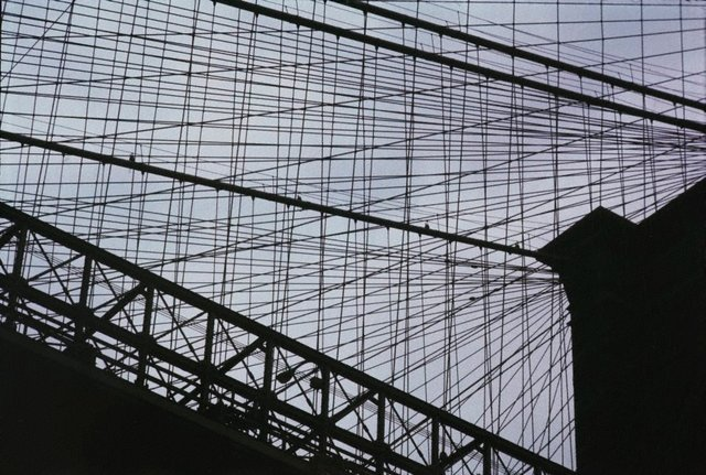 An image of Brooklyn Bridge Cables, New York