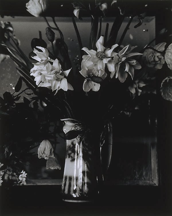 An image of Still life with daffodils