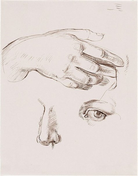 An image of Studies of the artist's hand, eye and nose by Nora Heysen