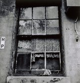 An image of Windows, Woolloomooloo by Viva Jillian Gibb