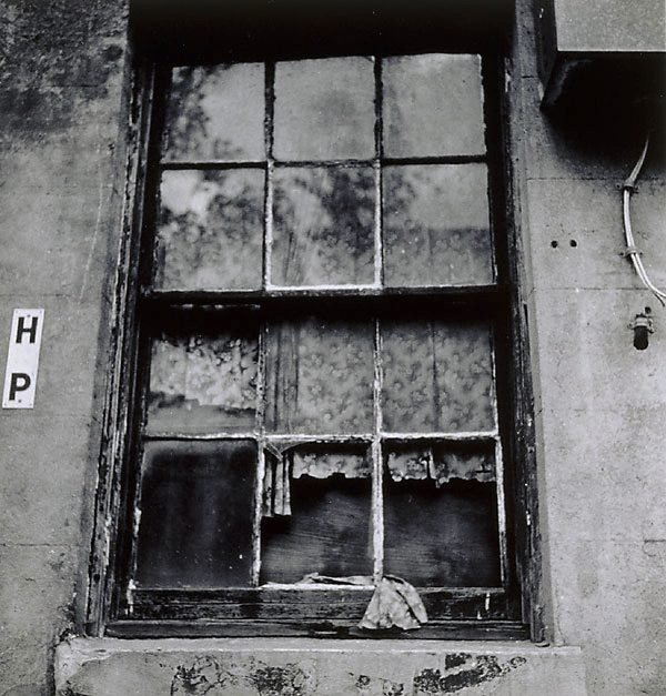 An image of Windows, Woolloomooloo