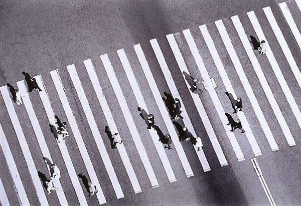 An image of Pedestrian crossing, Circular Quay, Sydney