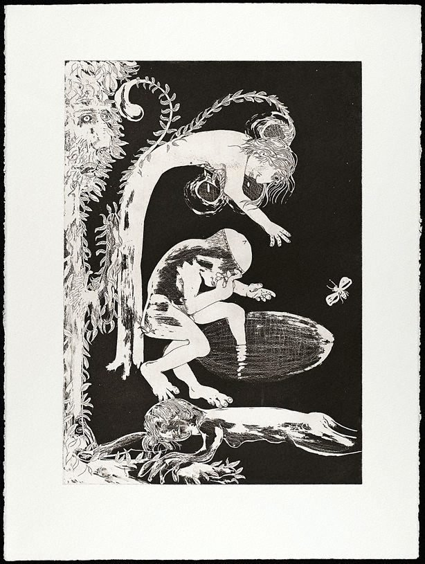 An image of (Illustration for Peter Porter's poem 'The making of a monster')